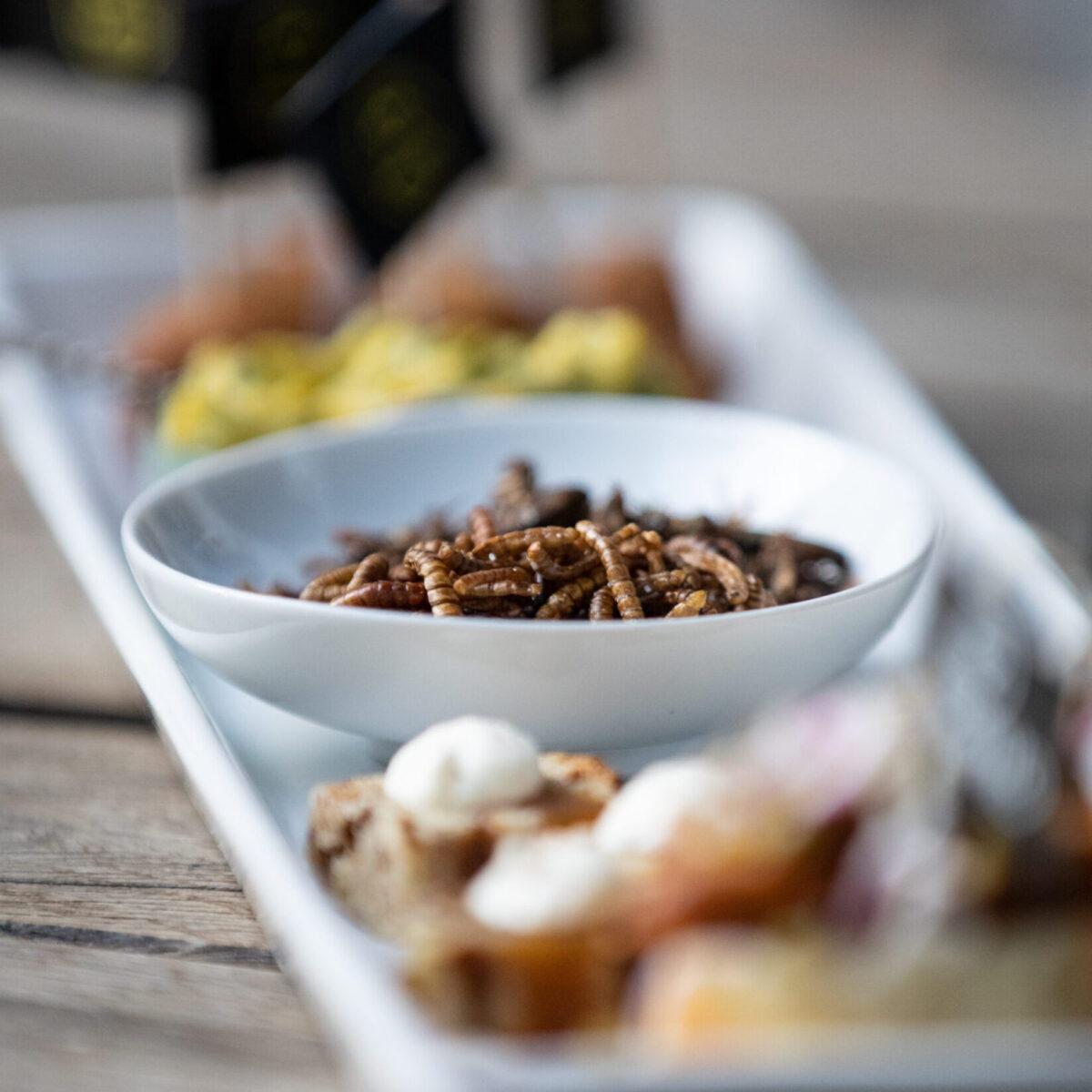 Insekten Snacks zum Apero oder einfach Zwischendurch. Einfaches Rezept zum Nachkochen