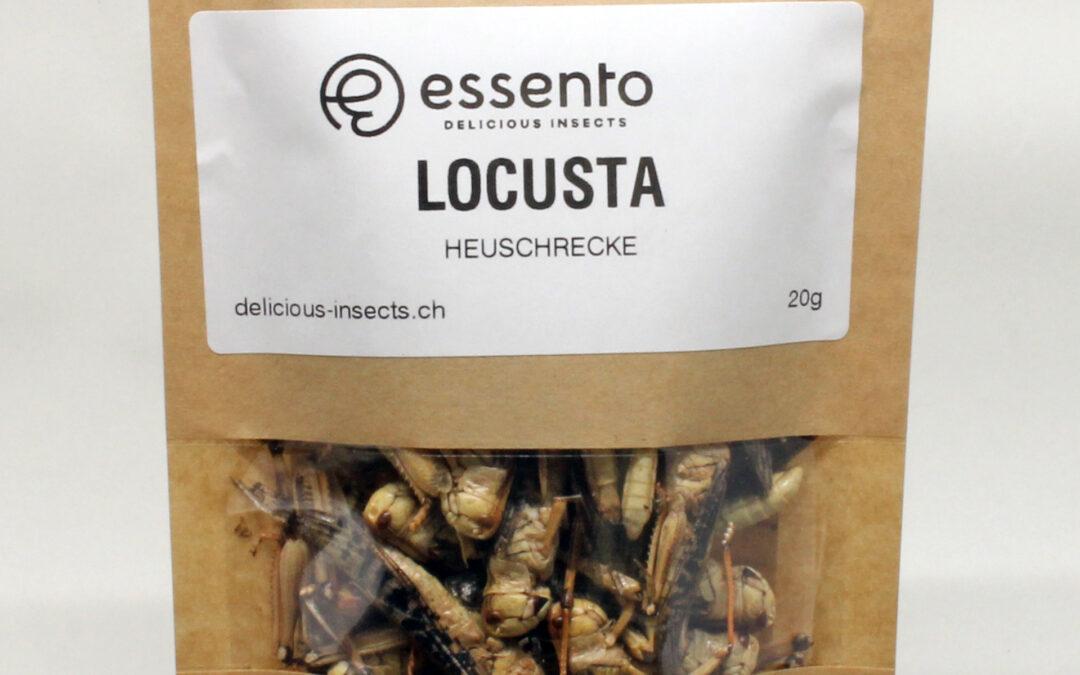 Locusta (grasshopper), dried