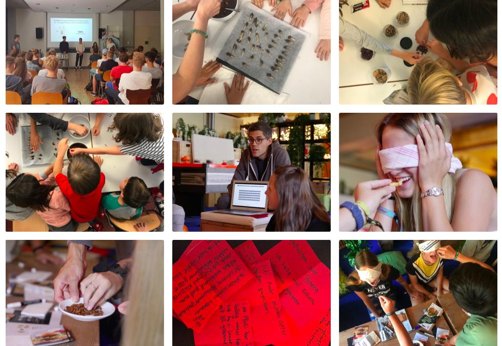 Bildungsprojekt mit der Swiss Insect Association